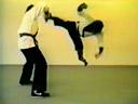 Bruce Lee the monkey